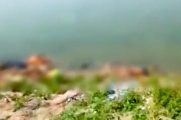 恒河惊现浮尸印度疫情严峻又有数十具尸体被冲上恒河岸边