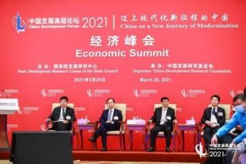 中国发展高层论坛开放新高地省市新举措